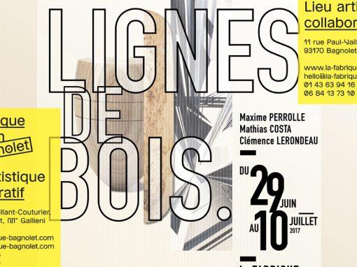 Exposition LIGNES DE BOIS 29 juin 2017